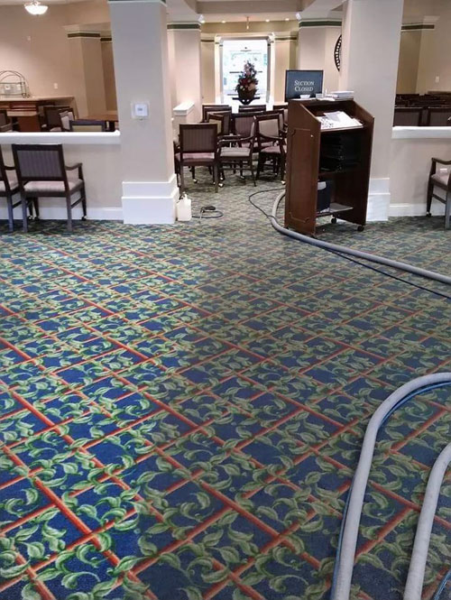 AllBrite Carpet Cleaning - Camden County NJ